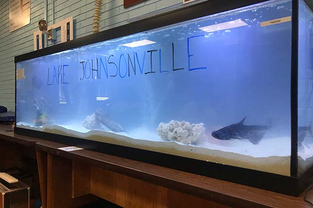 On a recent day in late October the mayor of Johnsonville was setting up a 125-gallon aquarium, which would eventually host a pair of bala sharks, a catfish, three oscars and live coral for real-life science lessons on saltwater habitats. Anthony Johnson's fourth and fifth graders at Isenberg Elementary School in Salisbury, NC refer to the tank as