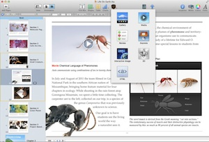 iBooks Author requires Mac OS X 10.7.2 or newer.