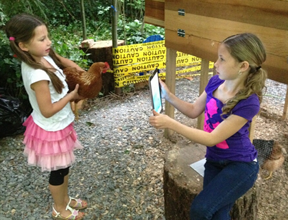 Students use an iPad to make a movie about chickens.